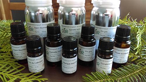 Boréaceutique - extraction et développement d'ingrédients actifs d'origine végétale