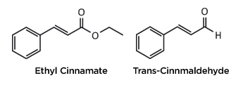 Ethyl cinnamate and trans-cinnamaldehyde