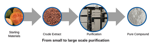 From small to large scale purification: Starting Materials > Crude Extract > Purification > Pure Compound