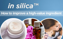 in silica - How to improve a high-value ingredient