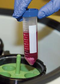 SiliaQuick QuEChERS para análisis de pesticidas